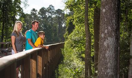 Nocatee Greenway Trails