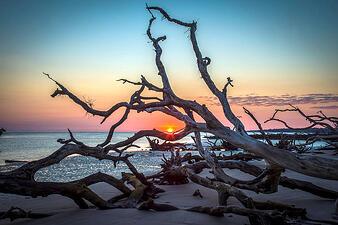 Little Talbot Island at Jacksonville, Florida