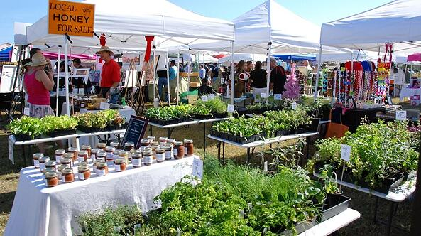 Local Vendors and Fresh Ingredients at Nocatee Farmers Market