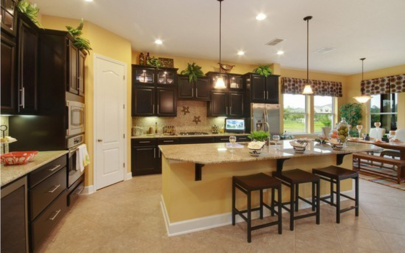 David Weekley Willowcove at Nocatee New Home