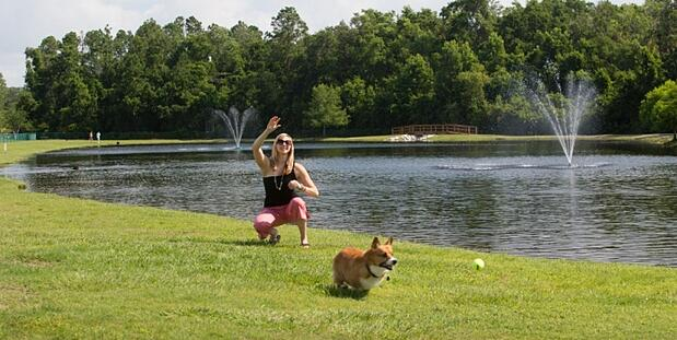 Nocatee Dog Parks