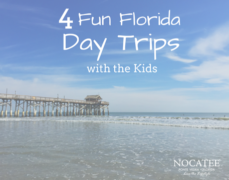 4 Fun Florida Day Trips with the Kids