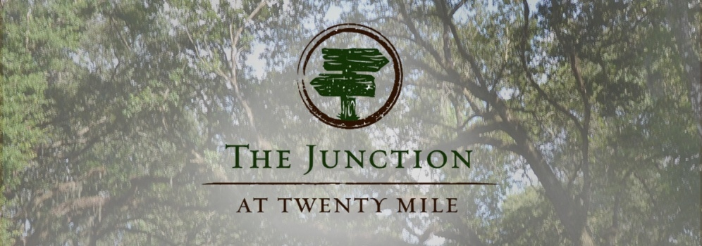 The Junction at Twenty Mile- Nocatee Blog