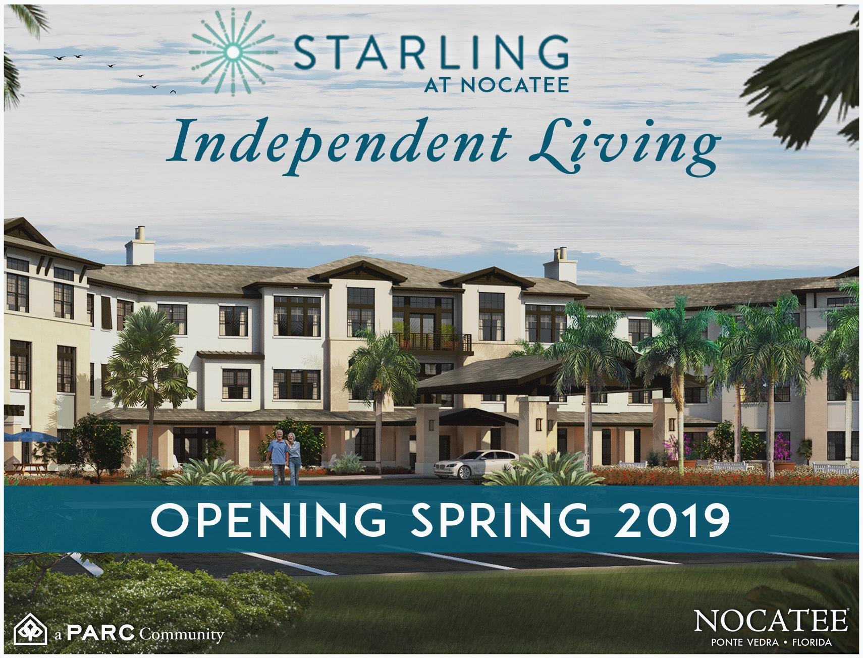 Starling at Nocatee