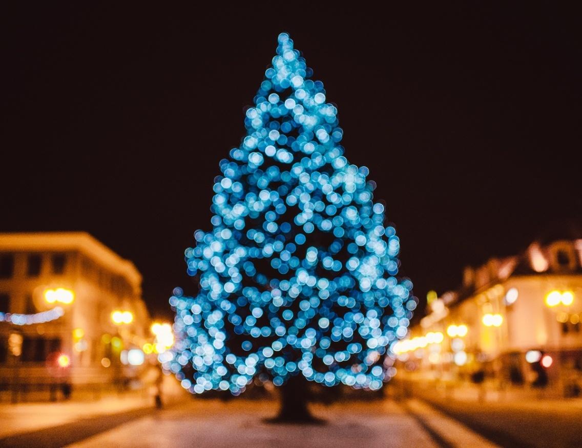 city-tree-bokeh-christmas-21430- nocatee - blue.jpg