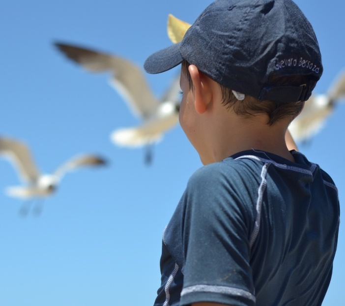 kid - boy - beach - seagull - child- blog.jpg
