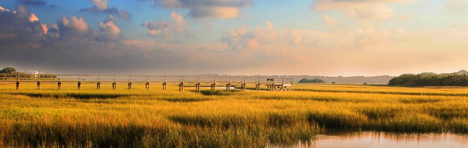 Marsh Views in Jacksonville, Florida