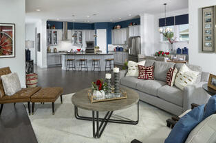 Model by David Weekley Homes in Daniel Park at Town Center