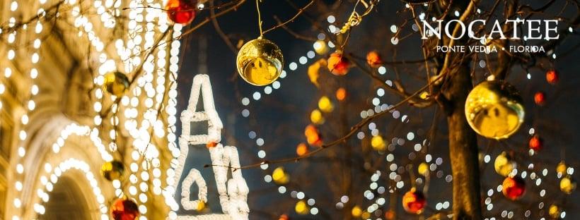 Christmas Lights and Holiday Cheer